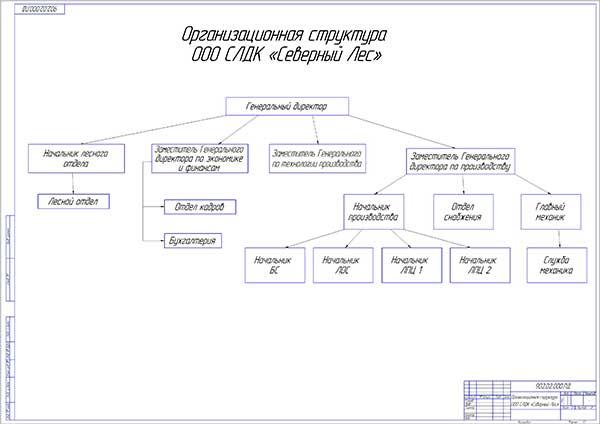 Организационная структура ООО СЛДК Северный Лес