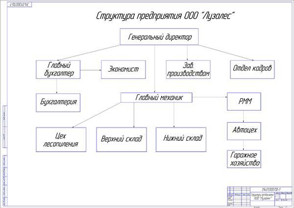Организационная структура ООО Лузалес